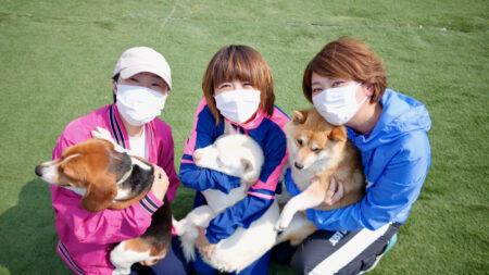 【賞金10万円】私たちの愛犬(パウロ・ペテロ・ヨハネ・テモテ・ヤコブ)のイラストを募集します!!