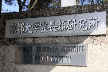 【朗報・大麻合法化の道が閉ざされる】京都大霊長類研究所教授が、大麻の合法成分「カンナビジオール」の投与実験など、4本の論文を捏造していたことが判明